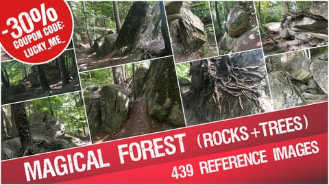 Magical Forest ( Rocks + Trees + Roots ) - Reference Images Pack