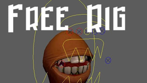 Mouth Rig