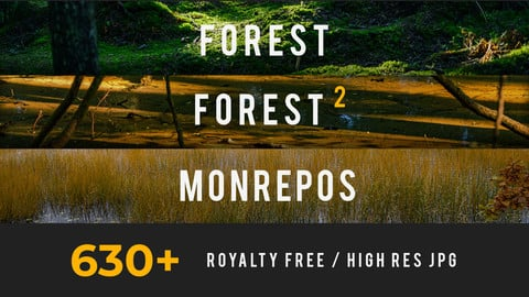Forest, Mega Photo Pack
