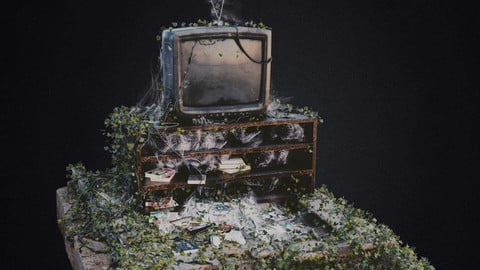 Old Tv (with growing ivy animation)