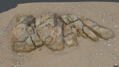 Photoscan_Beach Rock_0031_only HighPoly Mesh (16K Texture)
