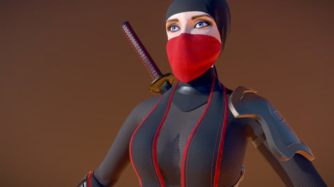 Ninja Demon Hunter