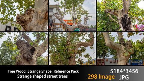 Tree Wood_Strange Shape_Reference Pack