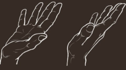 Hand - Open Palm - Cheat Brushes Pack