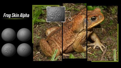 15 Frog Skin Alpha
