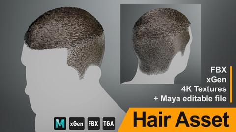 """Realtime Hair Asset """"V"""" - FBX/xGen + Maya source file, 4K Textures"""