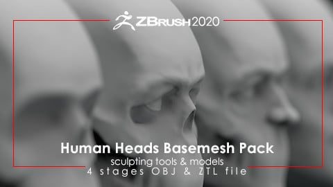 Human Heads Basemesh Pack