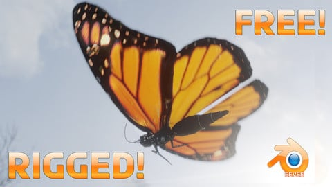 Free Low-Poly Butterfly   Fully Rigged   Blender 2.83