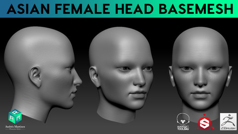 Asian Female Head BaseMesh