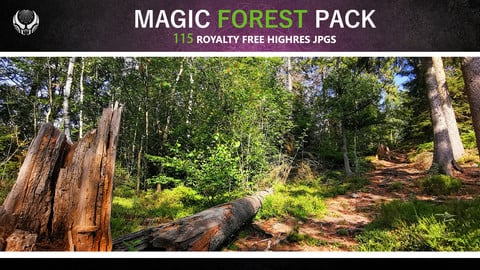MAGIC FOREST PACK