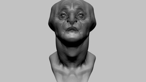 Fantasy Creature Head 03