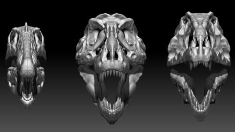 Spinosaurus - Tyrannosaurus - Giganotosaurus Skull Skeletons Set