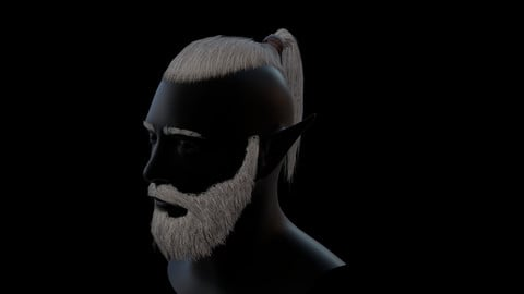 Hair tail beard