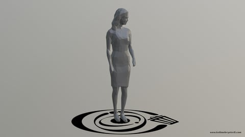 Human 100 LP R
