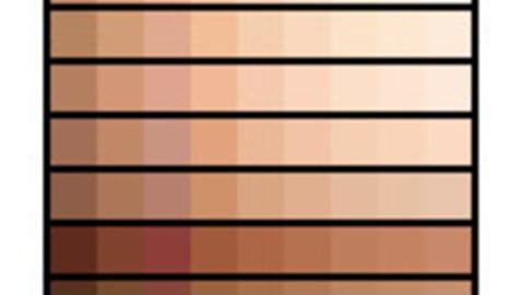 Skin Tones Palette 3 for Clip Studio Paint and Ex