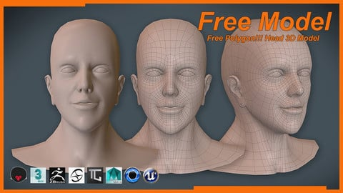 Free Polygon!!! Head 3D Model