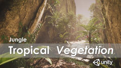 Jungle - Tropical Vegetation