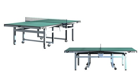 Butterfly Tennis Table