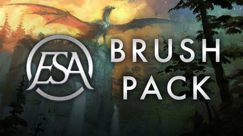 ESA Brush Pack