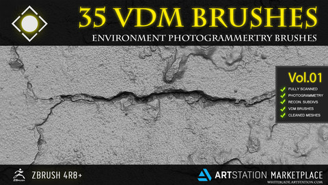 35 SCANNED VDM ENVIRONMENT PHOTOGRAMMETRY BRUSHES - ZBRUSH 4R8+