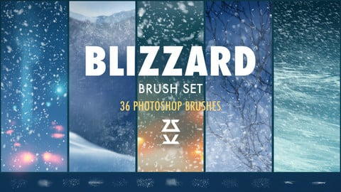Blizzard Brush Set