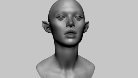 Female Head 07