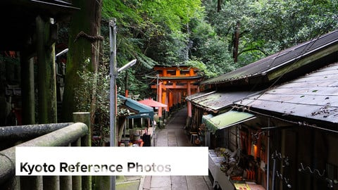 Reference Photos: Kyoto, Japan