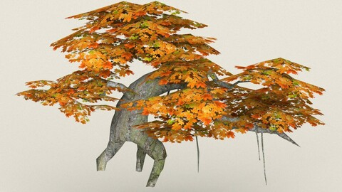 Low Poly Maple Tree 07