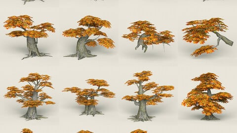 Fantasy Maple Tree Collection