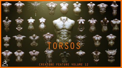 TORSOS - 33 Character & Creature Zbrush Insertmesh Brush