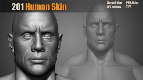 201 Human Skin