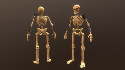 Skeleton Warrior Low-poly 3D model