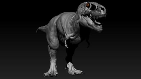 Tarbosaurus Muscle Base Model