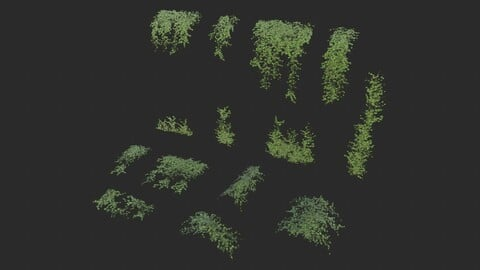 Ivy Modular Assets