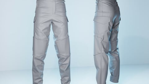 Semi Tactical Pants 3D model