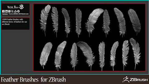 IMM Feather Brushes for ZBrush