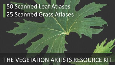 The Vegetation Artists Resource Kit - 1.0