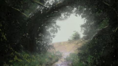Tunnel Végétal - Edition d'Art