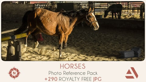 Photo Reference Pack: Horses