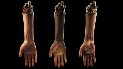 Hand -Arm Severed low poly