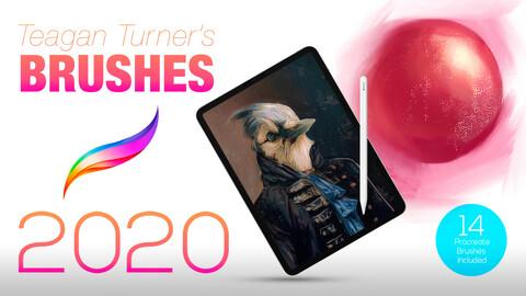 Teagan Turner Brushes 2020