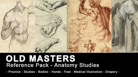 Old Masters Sketchbooks - Anatomy Studies - Torsos, Hands, Feet, Heads, Muscles (530+ High Resolution images)