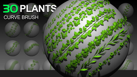 30 Plant Curve Brushes