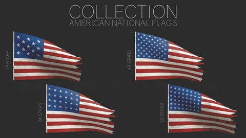 American Flags (Historical & Actual)