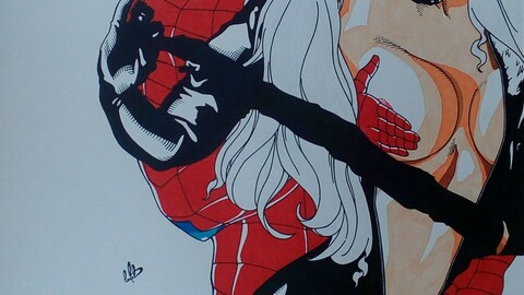 Spider man & Black cat