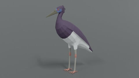 Low Poly Cartoon Abdim Stork