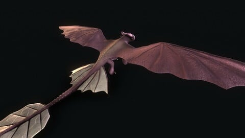 Cartoon 3D Dragon based in Toothless 3D model