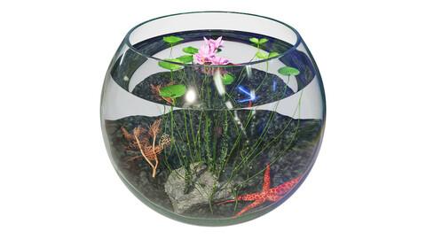 Aquarium Lotus