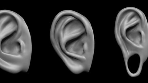 Free sample of 3 EARS with high poly and low poly 3D model