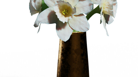 Paperwhite Narcissus flowers in a Copper Vase